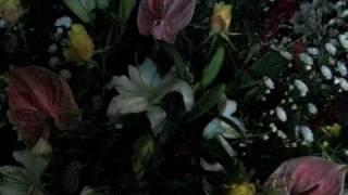 深夜の花屋の店先にて。