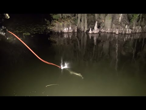 Fishing in the Dark! Girl Freshwater BOWFISHING in Florida Video