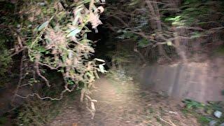 超怖い心霊 ghost live 真冬の心霊生ライブ 遠征最終日