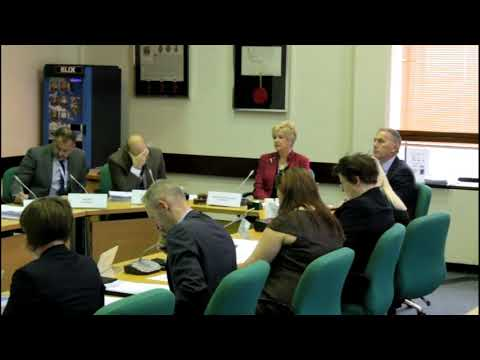 171023 Scrutiny Committee - Mrs. Grist