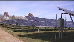 Hadley celebrating completion of solar project