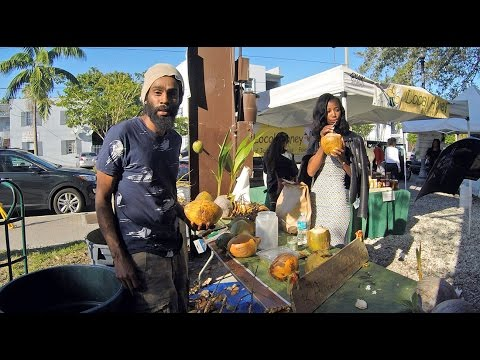 The Freshest Coconuts in Miami are in Coconut Grove