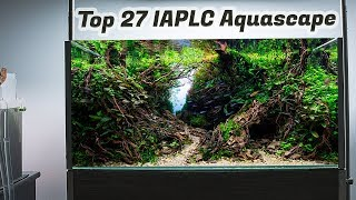 My Forest Aquascape Aquarium Planted Tank Setup IAPLC 2019