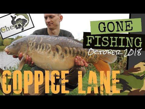 Gone Fishing - Coppice Lane Fishery, Burntwood Near Hammerwich. (18+) Carp Fishing October 2018