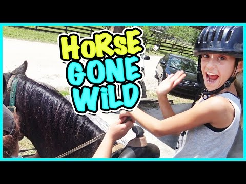 🐴 HORSEBACK RIDING FOR THE FIRST TIME! 🐴 SMELLY BELLY TV VLOG