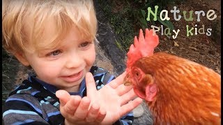 Nature play kids: Playing with chickens and cute baby chicks | cute kids and animal encounters