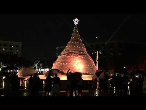 Video: Sand Christmas tree lights up West Palm Beach
