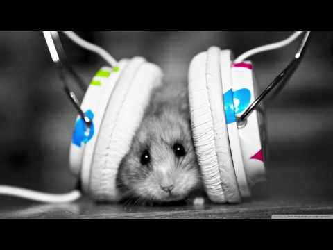 8D surround music