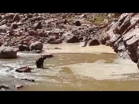 SECOND TRIP TO A RIVER NEAR SUCRE, BOLIVIA