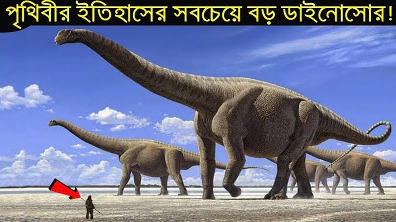 সবচেয়ে বড় ডাইনোসোর Argentinosaurus,গাঁ শিউরে উঠবে | Largest Dinosaur of The World Argentinosaurus