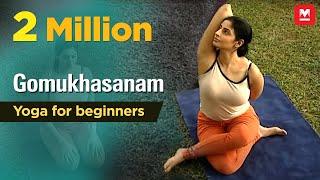 Gomukhasanam   Yoga for beginners by Yamini Sharma   Health Benefits   Manorama Online