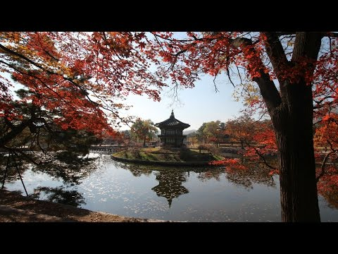 Why You NEED To Visit Seoul in Autumn.