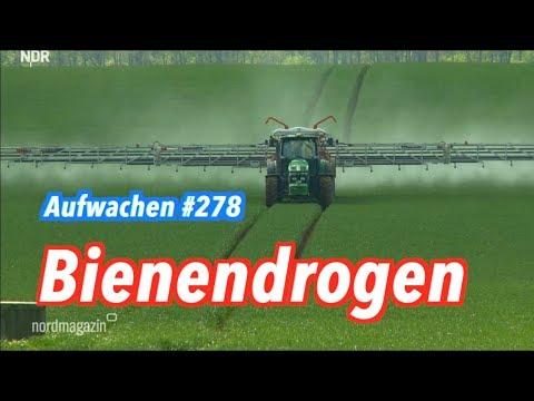 Aufwachen #278: Der Markt als Umweltschützer, Kinder für Deutschland & Heimatkohle