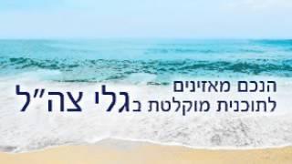 Prof. Gerald Steinberg, Galei Tzahal (Hebrew), EU Product Labeling, November 4, 2015