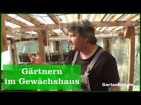 Gärtnern im Gewächshaus - YouTube