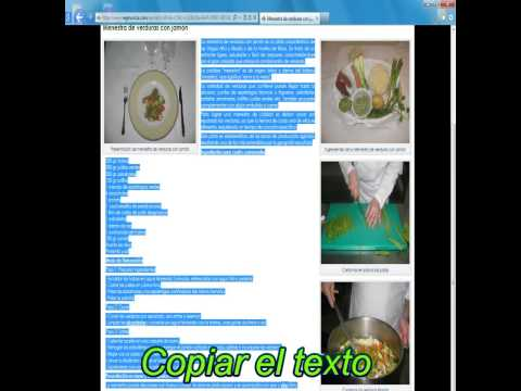 copiar-un-texto-de-internet-a-word-(video)