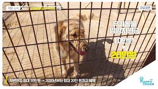 유기동물 입양 지원금 인상_[2020.4.5주] 영상 썸네일