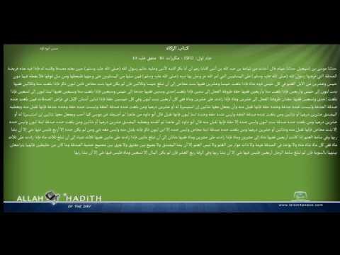 Sunan Abu Dawood Arabic سنن ابوداؤد 005 كتاب الزكاة