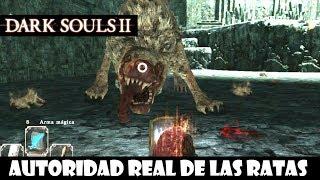 Dark Souls 2 guia: AUTORIDAD REAL DE LAS RATAS || Trucos para matar a este jefe || Episodio 50
