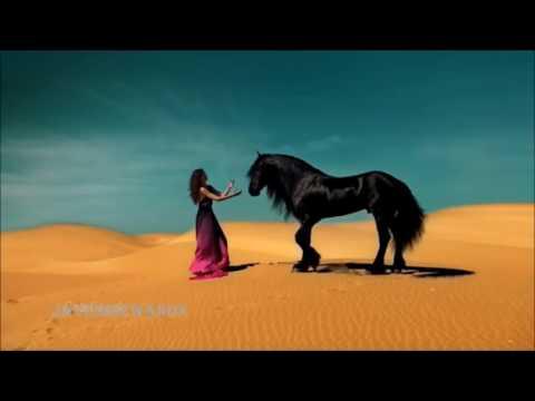 The Most Beautiful Persian Iran Love Song Ever [ Aryan ] thumbnail