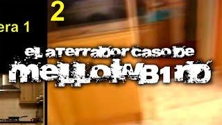 El aterrador caso de Mellowb1rd