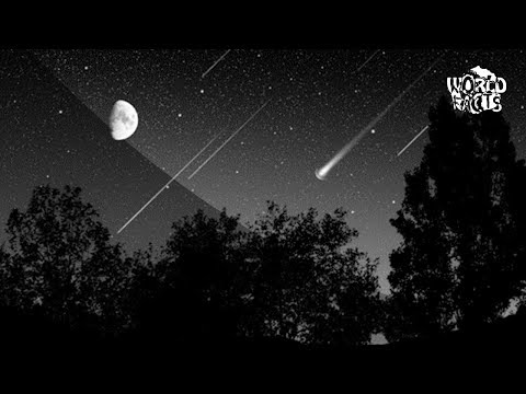 WHAT ARE THE FALLING STARS?
