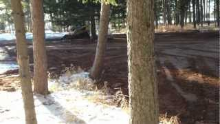 Wood Chucks playing in Woods.. Eddie Vegas Fender Stra t