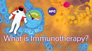 How does cancer immunotherapy work?