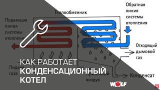 видео Настенной двухконтурный газовый котел отопления: устройство, преимущества и особенности