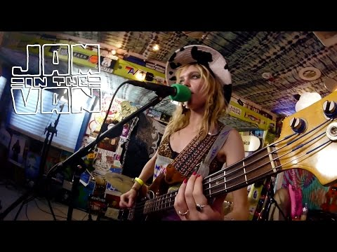 THE PARANOYDS -