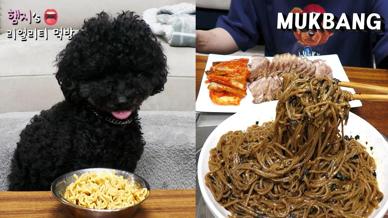 리얼먹방:) 들기름막국수 & 돼지고기수육 ★ ft. 짜장이 라면먹방(?)ㅣPerilla Oil Makguksu & SuyukㅣREAL SOUNDㅣASMR MUKBANGㅣ