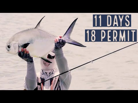 Permit On The Fly - Ascension Bay (2018)