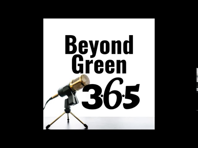 Beyond Green 365 Podcast - Ep. 2 - Plaster & DIY Tips