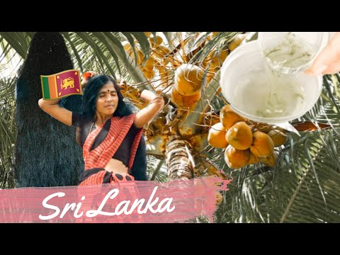Beauty and Health Secrets of Sri Lanka | #MaryjanesWorldTour