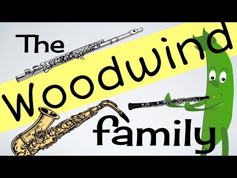 Woodwind Instruments for kids (INSTs 3) | Flute | Clarinet | Sax & more | Green Bean's Music