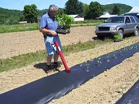 HAND HELD TRANSPLANTER.wmv