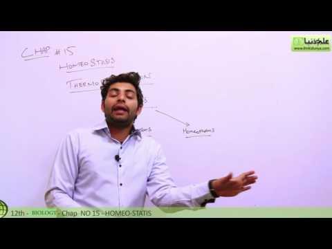 Thermoregulation Biology - Biology Chapter 15 Homeostasis - FSC Part 2 Pre Medical