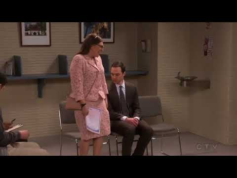 Sheldon and Amy Cityhall wedding  TBBT 11x10