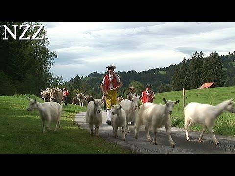 Planet Appenzell mit Simon Enzler - Dokumentation von NZZ Format (2006)