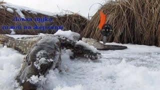 Ловля щуки зимой на жерлицы Часть 2відео рибалка зима 2015  Pike fishing winte.