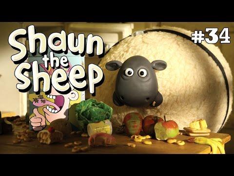 Shaun the Sheep - Domba gendut [Shirley Whirley]