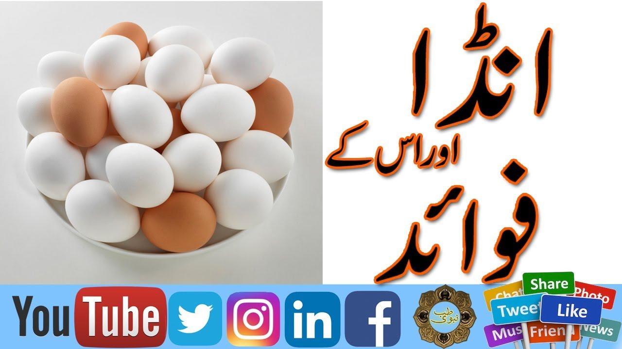 Egg khane ke Fawaid in Urdu   Rozana Ande Khane Ke Fayde   Benefits of Egg    Benefits Of Boil Eggs  