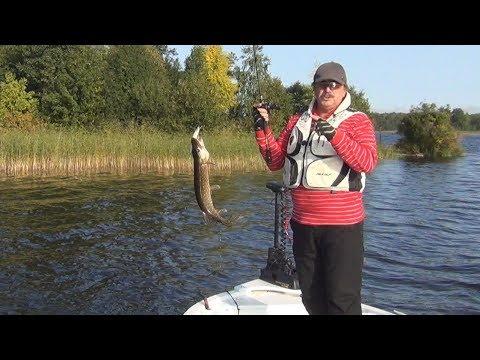 Вуокса. Рыбалка в Ленинградской области