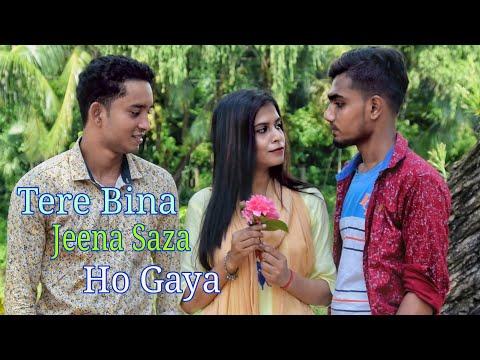 Tere Bina Jeena Saza Ho Gaya | New Love Story Song | Hindee Song | Imran Unofficial