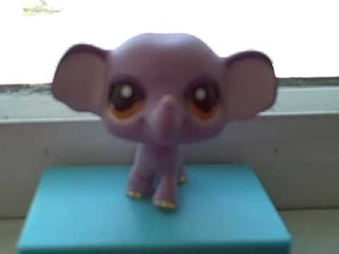 my pet elephant My pet elephant by lexilee created 2017-03-08 description my pet elephant tags animal viewed by 580 people loved by 2 people filesize 10051 bytes download big image .