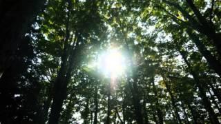 古関裕而のクラシック系歌謡曲の名曲、藤山一郎の名唱によるホームソン...