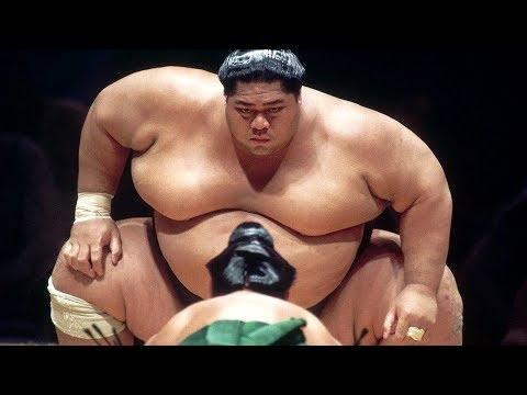 Самые толстые большие члены зарегистрировался