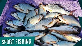 ОТКРЫТИЕ ФИДЕРНОГО СЕЗОНА 2020 Рыбалка на фидер ранней весной