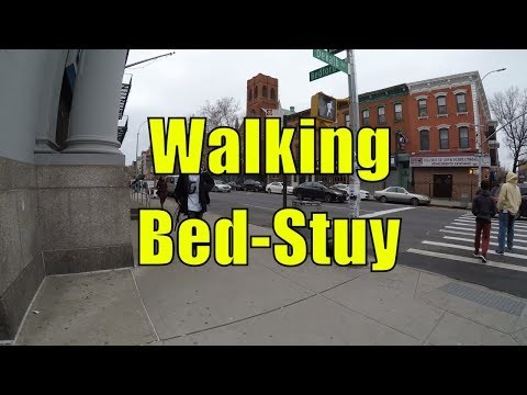 ⁴ᴷ Walking Tour of Bedford Stuyvesant (Bed-Stuy), Brooklyn, NYC