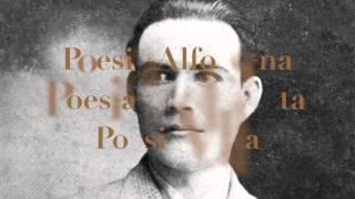 Alfonso Cortes